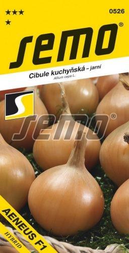 HOBBY, Zelenina - Cibule kuchyňská Aeneus F1, 0526 (Allium cepa L.)