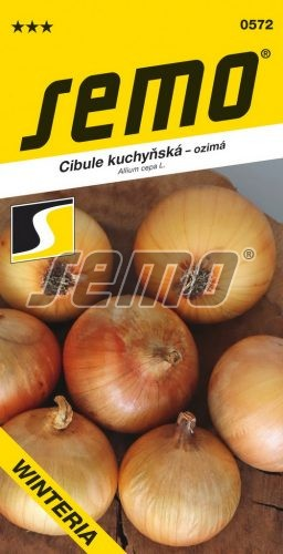 HOBBY, Zelenina - Cibule kuchyňská Winteria, 0572 (Allium cepa L.)