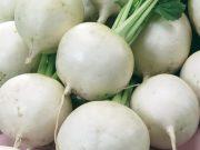 Osivo a semena zeleniny - novinky 2019/20 - Vodnice Amelie F1 (4107)