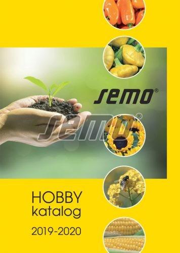 HOBBY, Ostatní - Katalog hobby 2019 – 2020, 8998-31