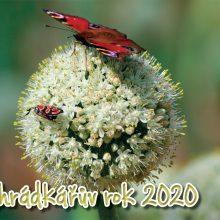 HOBBY, Ostatní - kalendář Zahrádkářův rok 2020