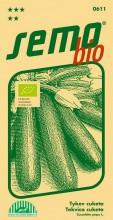 HOBBY, Zelenina - Tykev cuketa Startgreen F1, 0611b (Cucurbita pepo. L.)