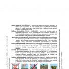 HOBBY, Zelenina – Fazol obecný keříčkový Gama, 0902