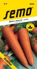 HOBBY, Zelenina - Mrkev obecná Rubína, 2242 (Daucus carota L.)