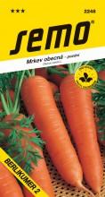 HOBBY, Zelenina - Mrkev obecná Berlikumer 2 (Romosa), 2248 (Daucus carota L.)