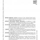 HOBBY, Zelenina – Mrkev obecná Berlikumer 2 (Romosa), 2248