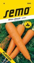 HOBBY, Zelenina - Mrkev obecná Flakker, 2249 (Daucus carota L.)