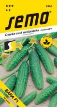 HOBBY, Zelenina - Okurka setá nakládačka Bára F1, 2306 (Cucumis sativus L.)