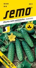 HOBBY, Zelenina - Okurka setá nakládačka Chantal F1, 2311 (Cucumis sativus L.)