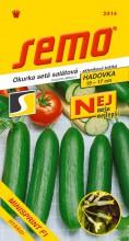 HOBBY, Zelenina - Okurka setá salátová hadovka Minisprint F1, 2414 (Cucumis sativus L.)