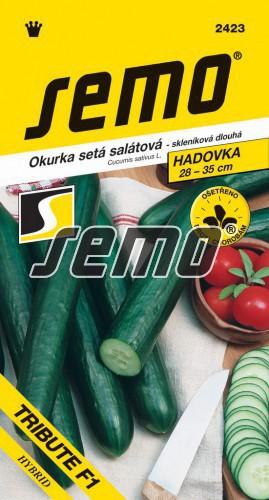 HOBBY, Zelenina - Okurka setá salátová hadovka Tribute F1, 2423 (Cucumis sativus L.)