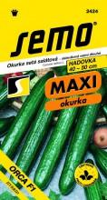 HOBBY, Zelenina - Okurka setá salátová hadovka Orca F1, 2424 (Cucumis sativus L.)