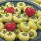 HOBBY, Zelenina – Paprika roční Pálinda F1, 2578
