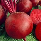 HOBBY, Zelenina – Řepa salátová Červená kulatá, 3502