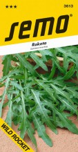 HOBBY, Zelenina - Roketa setá Wild Rocket, 3613 (Eruca sativa)