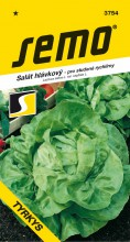 HOBBY, Zelenina - Salát hlávkový Tyrkys, 3754 (Lactuca sativa L. var.capitata L.)