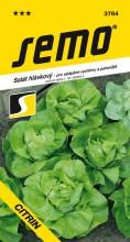 HOBBY, Zelenina - Salát hlávkový Citrin, 3764 (Lactuca sativa L. var.capitata L.)