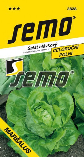 HOBBY, Zelenina - Salát hlávkový Maršálus, 3828 (Lactuca sativa L. var.capitata L.)