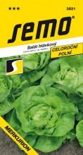 HOBBY, Zelenina - Salát hlávkový Merkurion, 3831 (Lactuca sativa L. var.capitata L.)