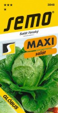HOBBY, Zelenina - Salát římský Glóbus, 3848 (Lactuca sativa L.)