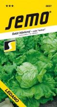 HOBBY, Zelenina - Salát hlávkový Ledano, 3857 (Lactuca sativa L. var.capitata L.)