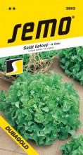HOBBY, Zelenina - Salát listový Dubagold, 3863 (Lactuca sativa L. var.crispa L.)