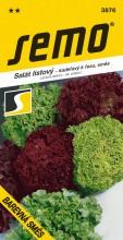 HOBBY, Zelenina - Salát listový barevná směs, 3876 (Lactuca sativa L. var.crispa L.)