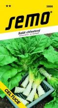 HOBBY, Zelenina - Salát chřestový Celtuce, 3898 (Lactuca sativa L. var. asparagina)