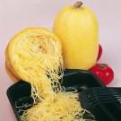 HOBBY, Zelenina – Tykev obecná Vegetable Spagheti, 4085