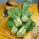 HOBBY, Zelenina – Čínské zelí Cash F1 (typ Pak-Choy), 4458