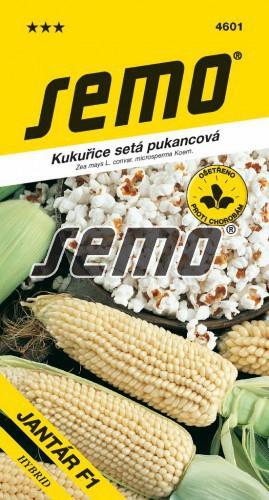 HOBBY, Zelenina - Kukuřice setá pukancová Jantár F1, 4601 (Zea mays L. convar. microsperma Koern.)