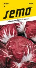 HOBBY, Zelenina - Čekanka salátová Palla rossa 3, 4802 (Cichorium intybus L.)