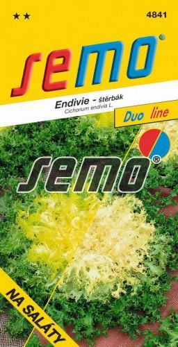 HOBBY, Zelenina - Endivie (štěrbák) směs barev, 4841 (Cichorium endivia L.)