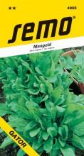 HOBBY, Zelenina - Mangold Perpetual Spinach (Gator), 4905 (Beta vulgaris L. var. vulgaris)