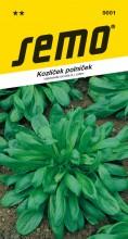 HOBBY, Zelenina - Kozlíček polníček Larged Leaved, 5001 (Valerianella locusta (L.) Laterr.)