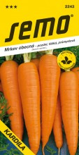 HOBBY, Zelenina - Mrkev obecná Kardila, 2243 (Daucus carota L.)