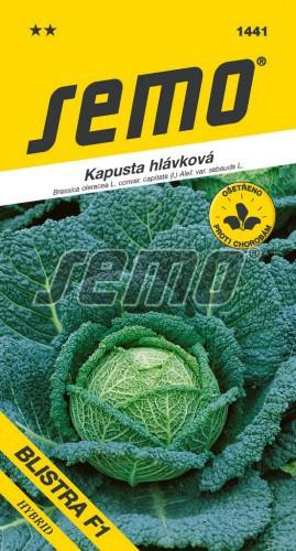 HOBBY, Zelenina - Kapusta hlávková Blistra F1, 1441 (Brassica oleracea L. convar. capitata (L.) Alef. var. sabauda L.)