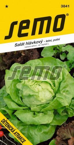 HOBBY, Zelenina - Salát hlávkový Dětenická atrakce, 3841 (Lactuca sativa L. var.capitata L.)