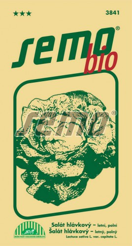 HOBBY, Zelenina - Salát hlávkový Smeraldo, 3841b (Lactuca sativa L. var.capitata L.)