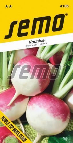 HOBBY, Zelenina - Vodnice Purple Top White Globe, 4105 (Brassica rapa L. var. rapa)