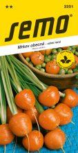 HOBBY, Zelenina - Mrkev obecná Pariser Markt 4, 2251 (Daucus carota L.)