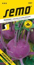 HOBBY, Zelenina - Kedluben Purpuran F1, 0367 (Brassica oleracea L.)