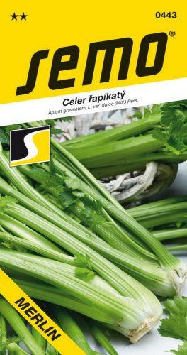 HOBBY, Zelenina - Celer Merlin, 0443 (Apium Graveolens L.)