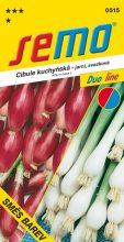 HOBBY, Zelenina - Cibule kuchyňská směs barev svazková, 0515 (Allium cepa L.)