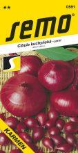 HOBBY, Zelenina - Cibule kuchyňská Karmen, 0551 (Allium cepa L.)