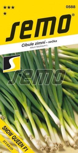 HOBBY, Zelenina - Cibule zimní Snow Queen F1, 0588 (Allium fistulosum L.)