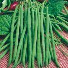 HOBBY, Zelenina – Fazol obecný keříčkový Hawaii, 0915