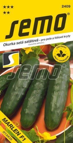 HOBBY, Zelenina - Okurka setá salátová, 2409 (Cucumis sativus L.)