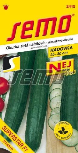HOBBY, Zelenina - Okurka setá salátová hadovka Superstar F1, 2415 (Cucumis sativus L.)