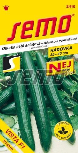 HOBBY, Zelenina - Okurka setá salátová hadovka Vista F1, 2416 (Cucumis sativus L.)